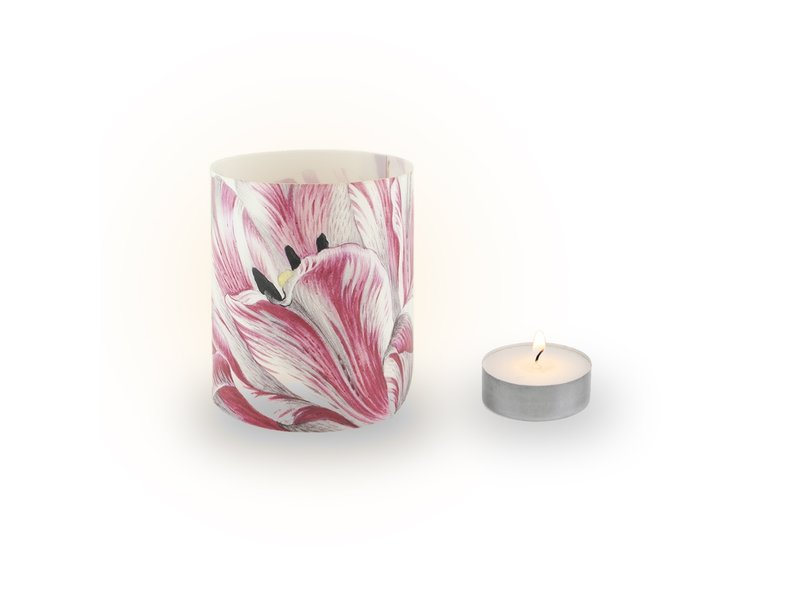 Photophore, Merian,  trois tulipes