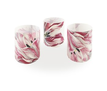 Kerzenschirm, Merian, Drei Tulpen