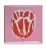 Imán de nevera, línea de muñeca de tulipán rosado