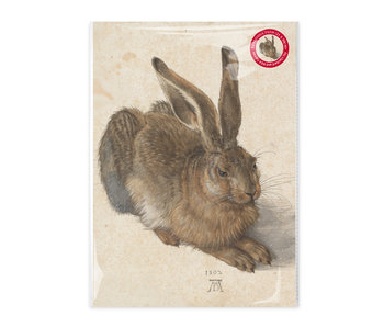 Reproduction A4, Dürer, Hare