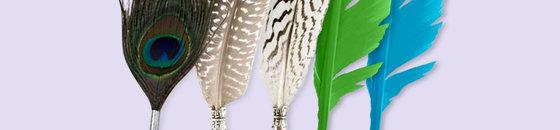 Stylo-plumes