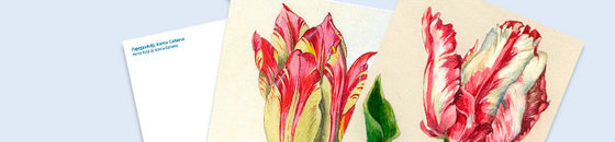 Postcard tulips