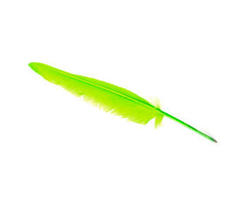 Schreibfeder, Grün