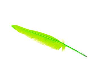 Stylo plume Vert