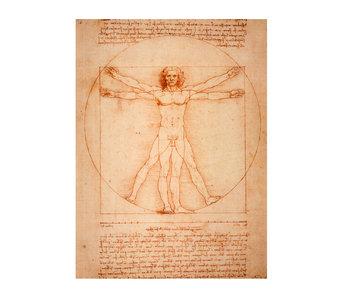 Diario del artista,Da Vinci, el hombre de Vitruvio