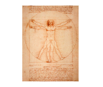 Künstlerjournal,  Da Vinci, vitruvianischer Mann