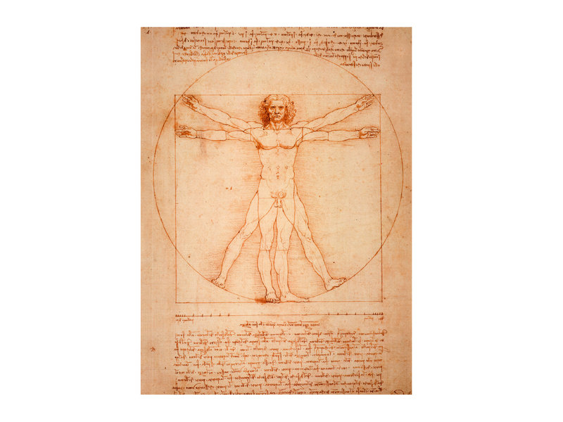 Softcover art sketchbook, Da Vinci, Vitruvian Man