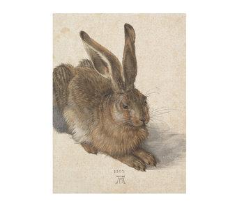 Cahier d'artiste, Dürer, Lièvre