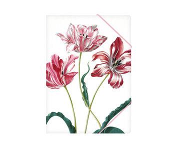 Carpeta archivadora de papel con cierre elástico, A4, Merian, tres tulipanes