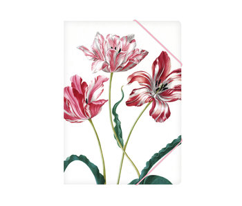 Paper file folder with elastic closure,A4, Merian, Three tulips