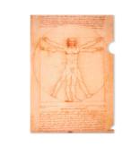 File Sheet A4, Da Vinci,  Da Vinci, Vitruvian Man