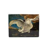 Meesterwerk-op-hout, DDe bedreigde zwaan, Asselijn, Rijksmuseum, 265 x 195mm