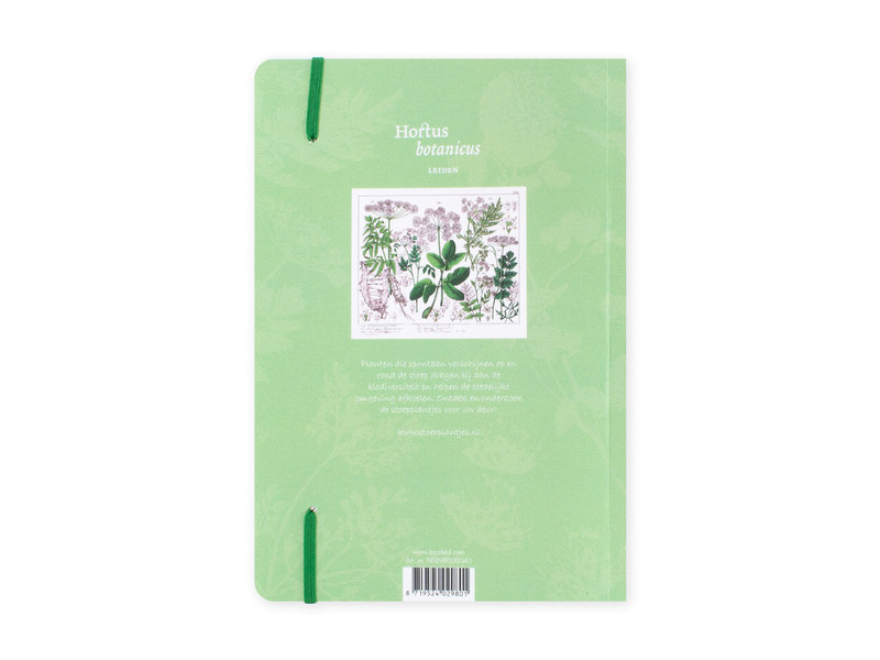 Softcover-Notizbuch, A5,Holunder, Hortus Botanicus