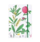 Softcover-Notizbuch, A5, Rotkleeblume, Hortus Botanicus