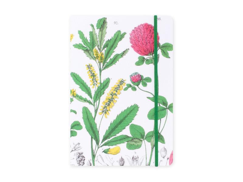 Softcover notitieboekje, A5,  Rode klaver, Hortus Botanicus