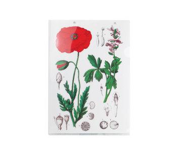 L-Ordner A4-Format, Mohn, Hortus Botanicus