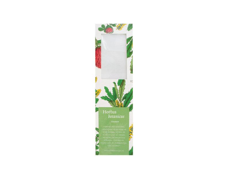 Marque-page avec loupe,   Fleur de trèfle rouge, Hortus Botanicus
