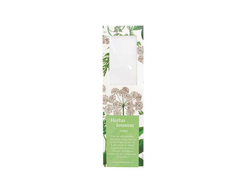 Marque-page avec loupe,  Sureau, Hortus Botanicus