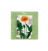 Fridge Magnet, Dandelion , Hortus Botanicus