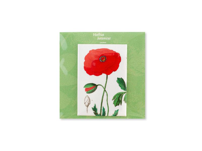 Fridge Magnet, Poppy, Hortus Botanicus
