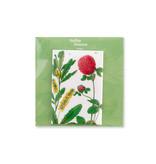 Koelkast magneet, Rode klaver, Hortus Botanicus
