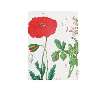 Glued Exercise book , A5, Poppy, Hortus Botanicus