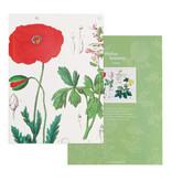 Écriture collée, A5,   Coquelicot, Hortus Botanicus