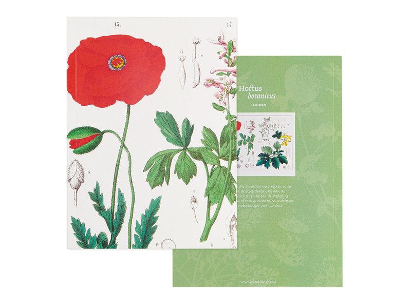 Escritura pegada, A5, Amapola, Hortus Botanicus