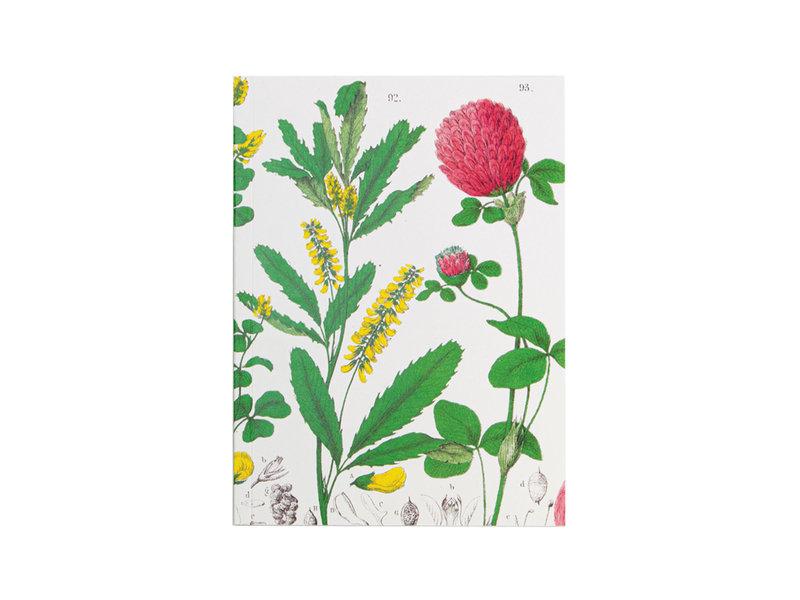 Geklebte Heft, A5, Rotkleeblume, Hortus Botanicus