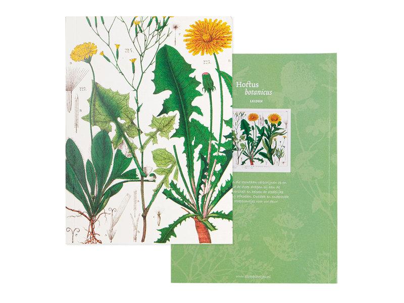 Geklebte Heft, A5,Löwenzahn, Hortus Botanicus