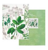 Schrift, gelijmd,  A5,  Zevenblad, Hortus Botanicus