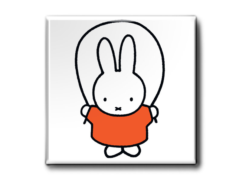 Magnets, Set of 3, Miffy plays