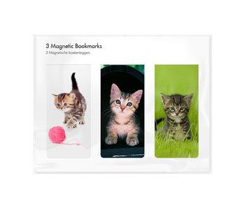 Set van 3, Magnetische boekenleggers , Kittens