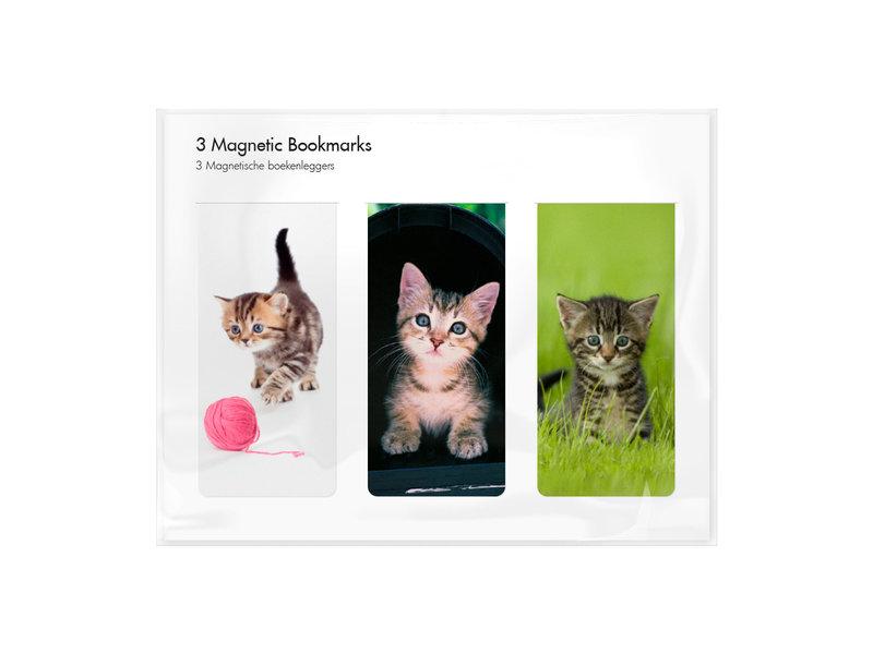3er-Set, magnetisches Lesezeichen,  Kätzchen