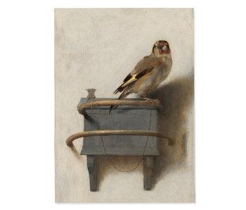 Poster 50x70 cm, Der Stieglitz, Carel Fabritius