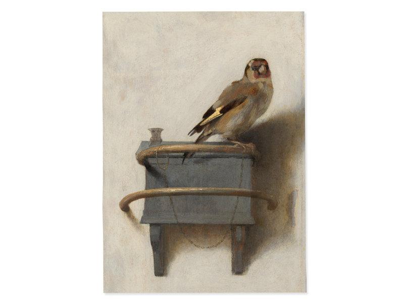 Affiche 50x70 cm , Le Chardonneret, Carel Fabritius