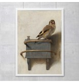 Cartel  50x70 cm,  El jilguero, Carel Fabritius