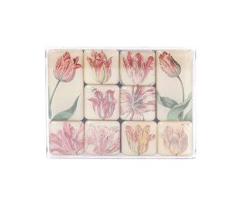 Mini Magneten Set, Tulpen, Marrel