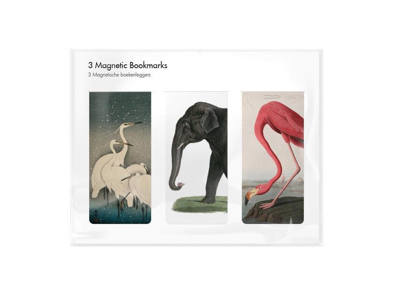 Lot de 3, signets magnétiques, Imprimés animaliers