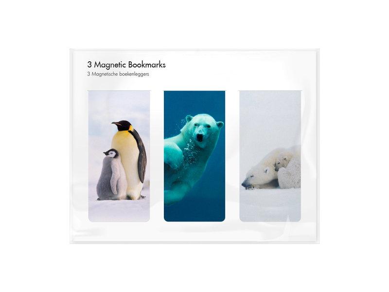 3er-Set, magnetisches Lesezeichen,  Arktis