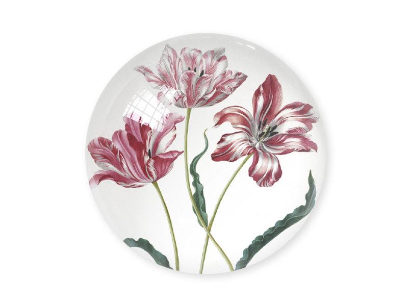Glazen bolle  presse papier,  Tulpen, Merian