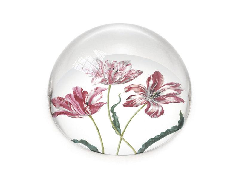 Presse-papier en verre,  Tulipes, Merian
