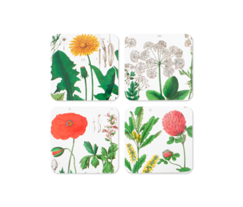 Untersetzer, 4er-Set, Hortus Botanicus