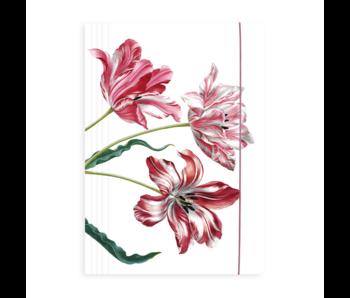 Porte-documents avec bande élastique, Merian, trois tulipes