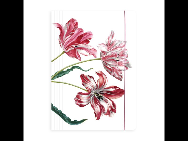 Carpeta portadocumentos con banda elástica A4, Merian, tres tulipanes