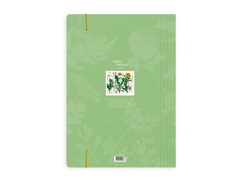 Dokumentenmappe, Holunderblatt, Löwenzahn, Hortus Botanicus