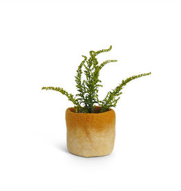 aveva FLOWER POT 18, S, mustard