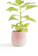 aveva FLOWER POT 18, S, pink