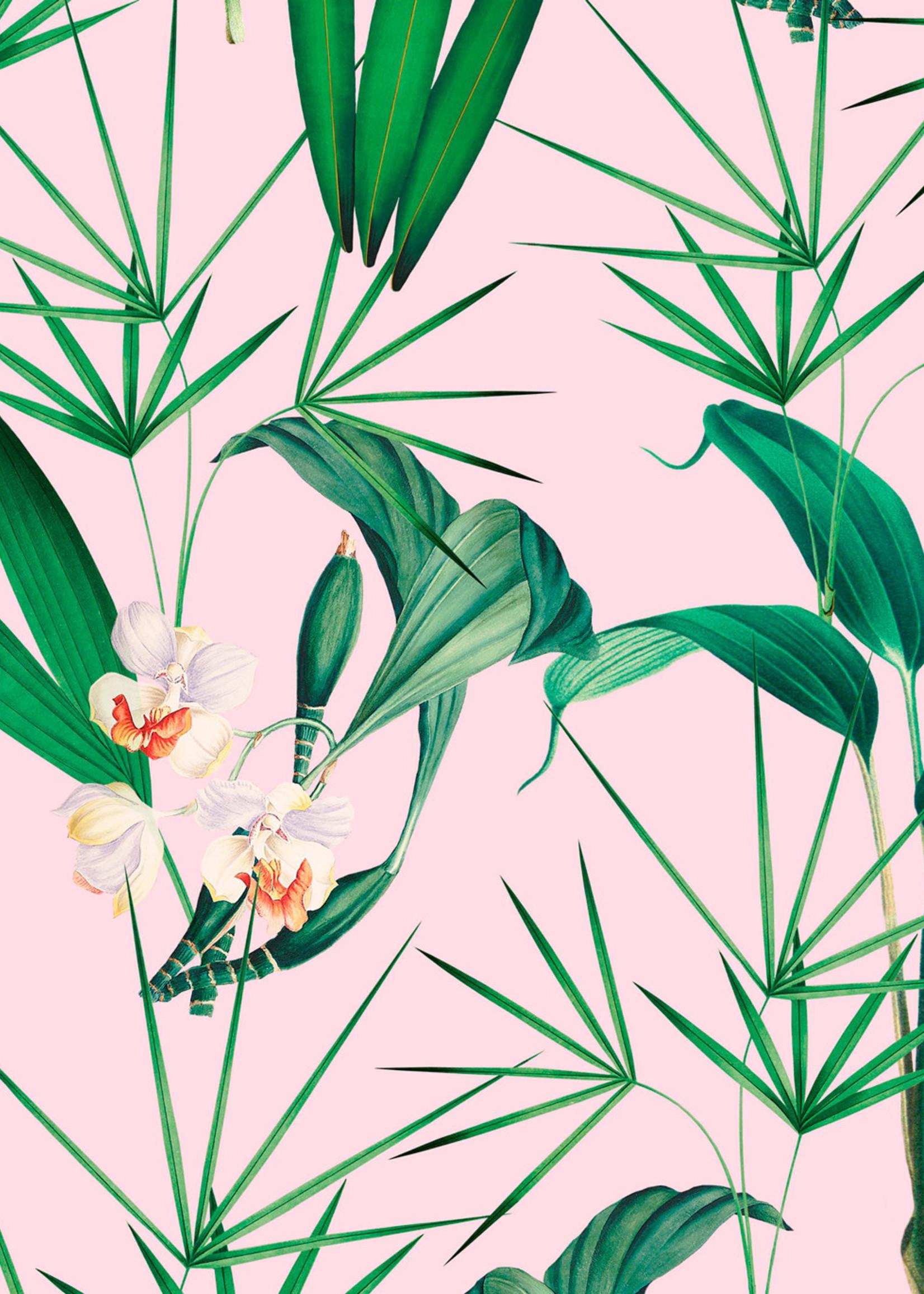 MINDTHEGAP Designer Wallpaper PALM SPRINGS