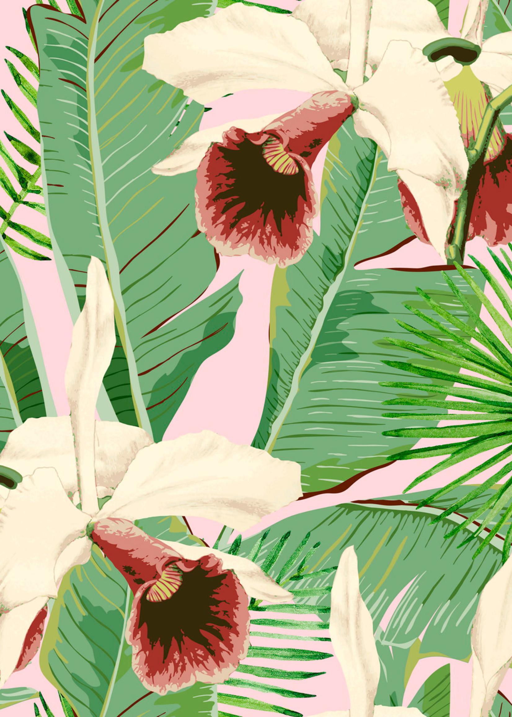 MINDTHEGAP Designer Wallpaper TREASURE ISLAND Pink